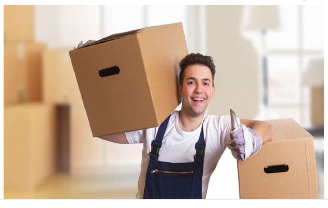 Packers And Movers In Vasant Vihar