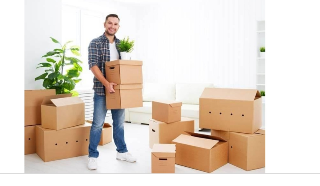 Packing And Moving Sevices
